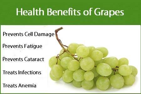 01 @ Health Benefits Of Grapes
