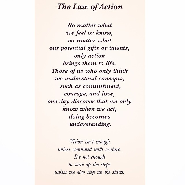 01 Universal Laws About Action
