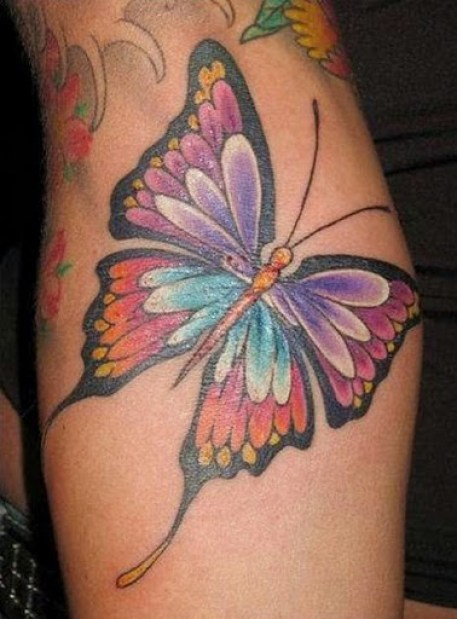 019 @ Butterfly Tattoos Hottest