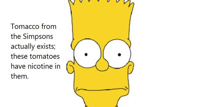 03 @ Simpsons Quotes