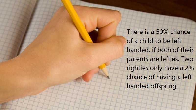 05 @ Left Handed People Facts