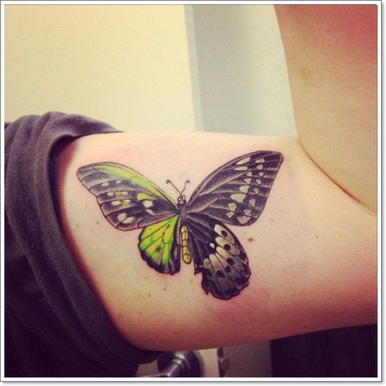 050 @ Butterfly Tattoos Nice