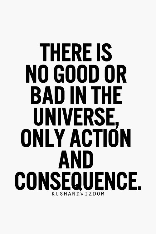 07 @ Universal Action Laws Quotations