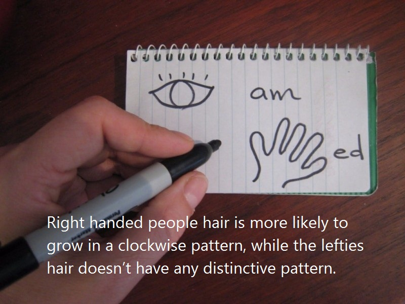 08 @ Left Handed People Facts