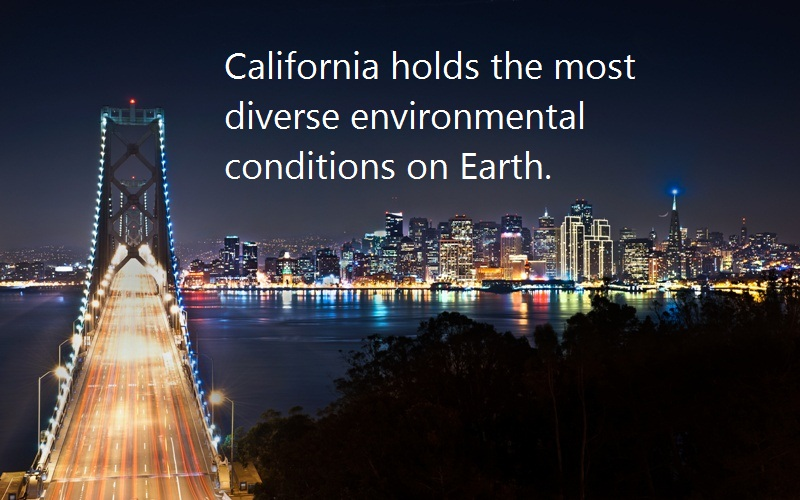 10 @ California Facts