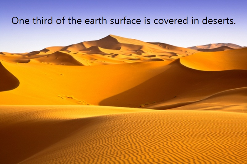 10 @ The Desert Facts