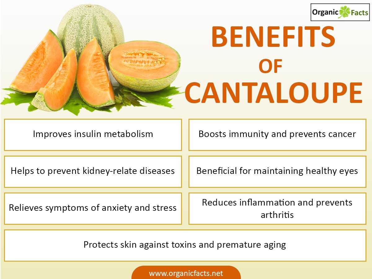 14 @ Health Benefits Of Cantaloupe
