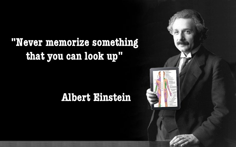 17 @ Albert Einstein Quotations