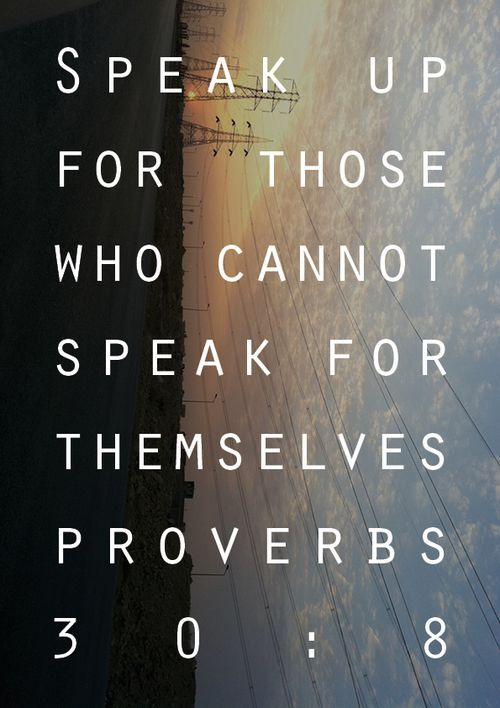172 @ Bible Wisdom Quotes and Sayings
