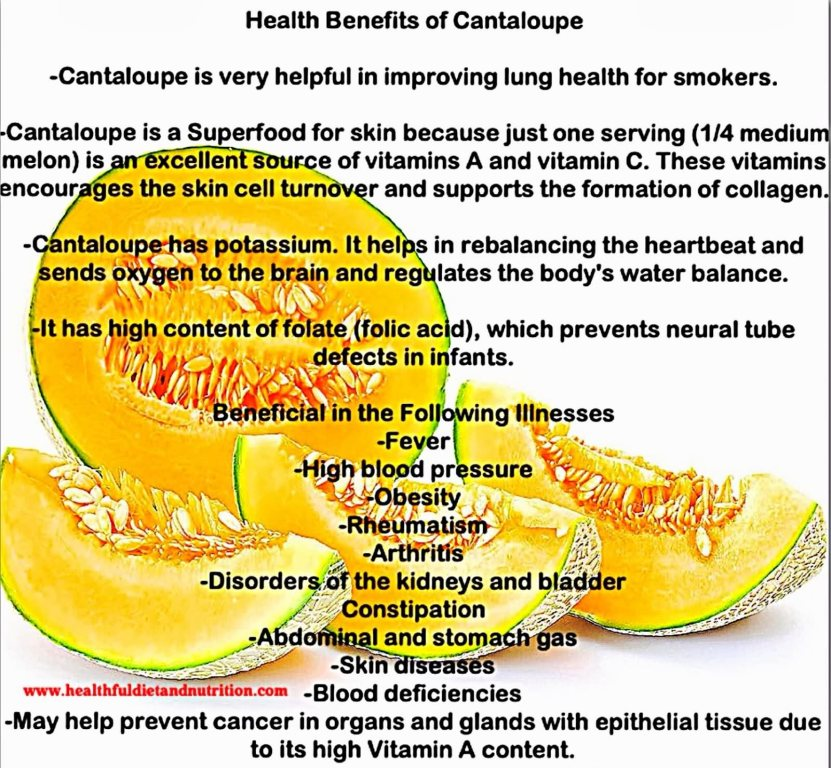 18 @ Health Benefits Of Cantaloupe