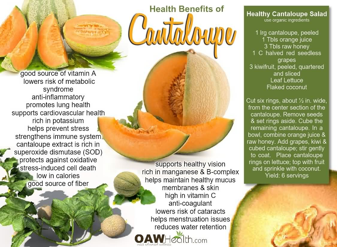 19 @ Health Benefits Of Cantaloupe
