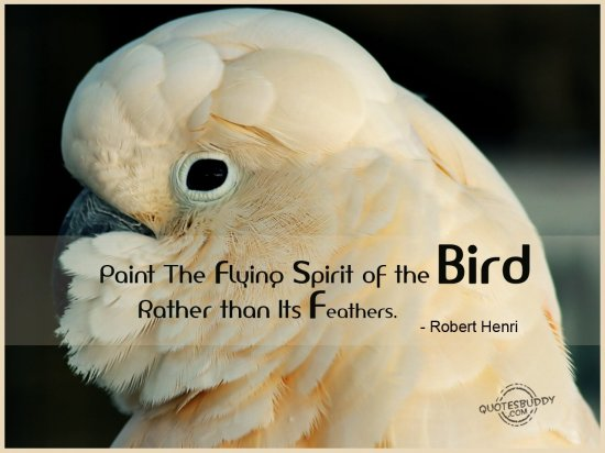 29 @ Birds Quotations