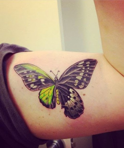 30 @ Butterfly Tattoo
