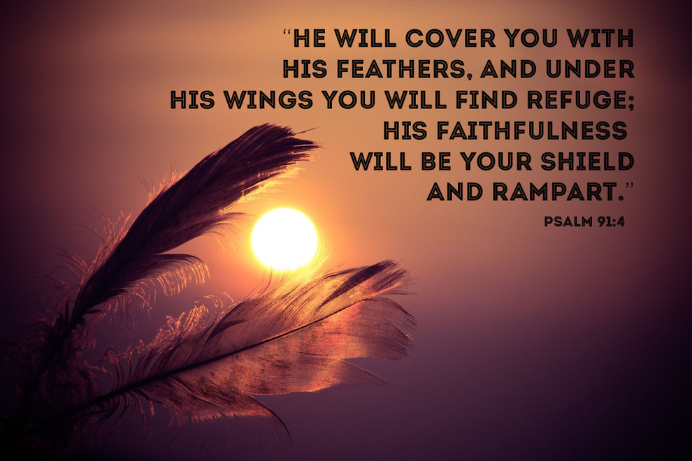 333 @ Bible Wisdom Quotes Friday