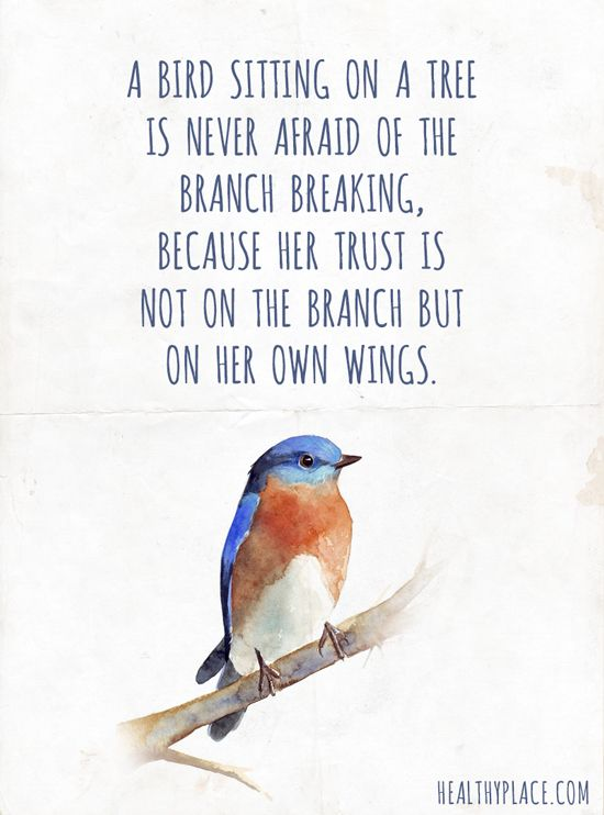 34 @ Birds Quotations