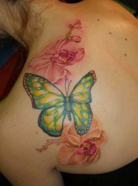 37 @ Butterfly Tattoo