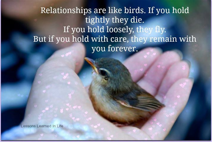38 @ Birds Quotations