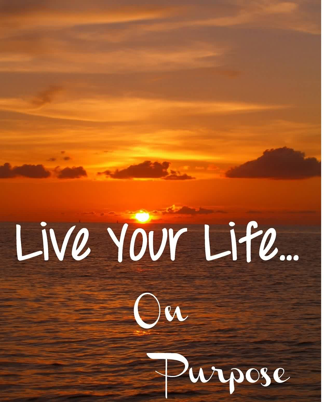43 @ Life Quotes Motivational