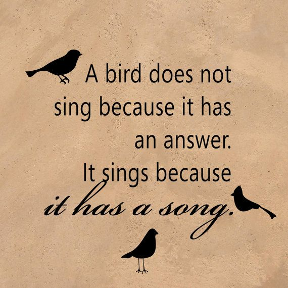 45 @ Birds Quotes and Sayings