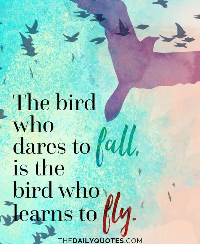 55 @ Birds Quotes and Quotations