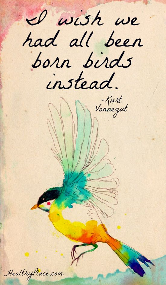 62 @ Birds Quotes and Quotations