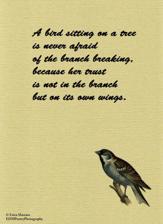 64 @ Birds Quotes and Quotations