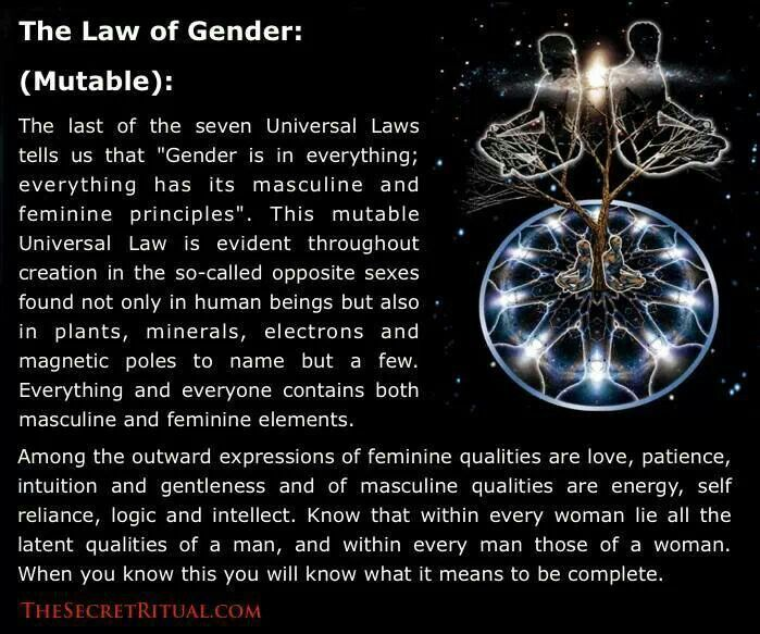 81 @ Universal Laws Sayings and Quotes
