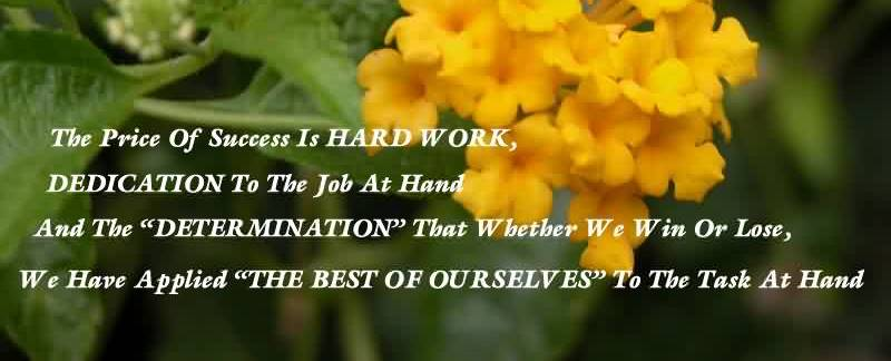 85 @ Motivational Quotes About Hard Work