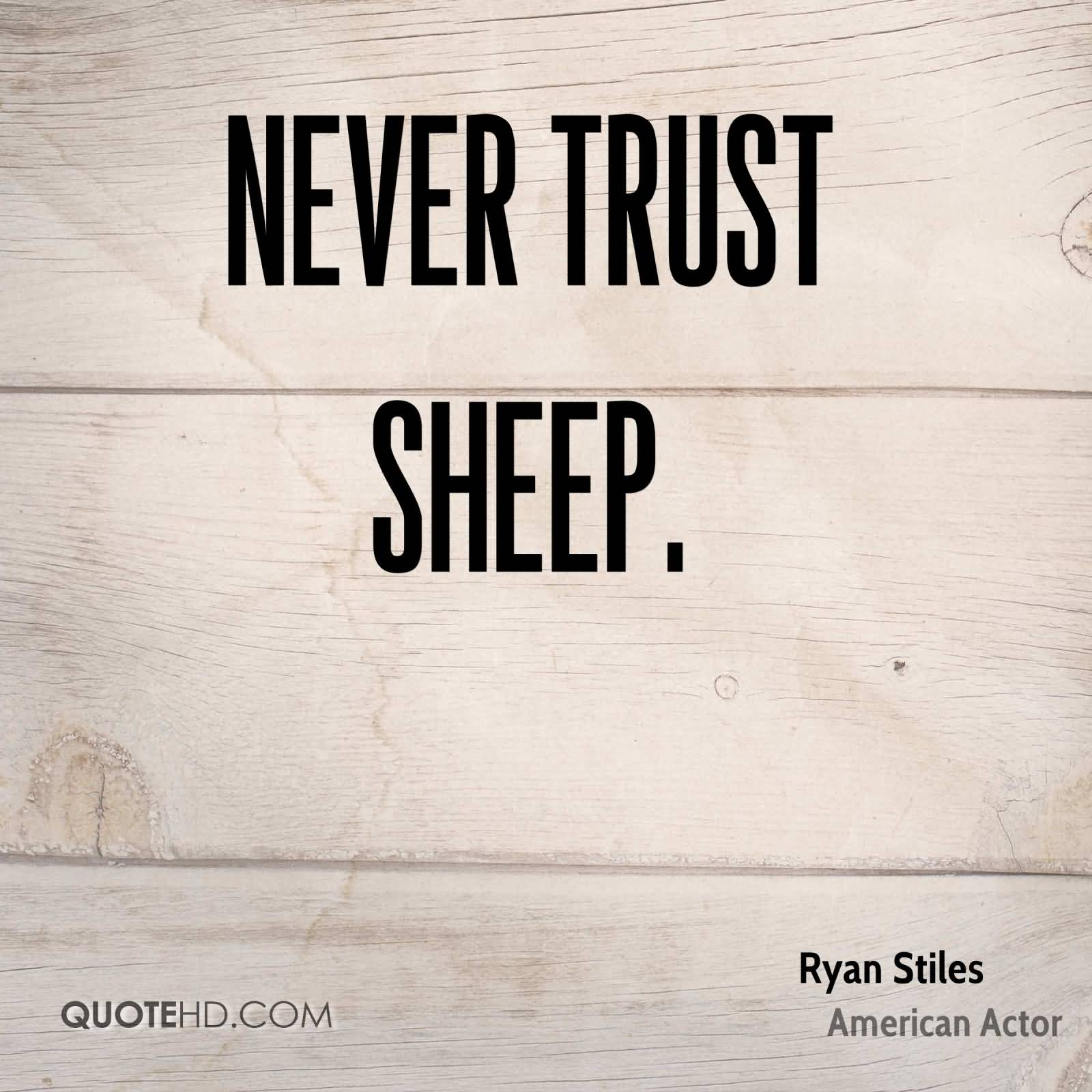 89 @ Never Trust Quotes Monday