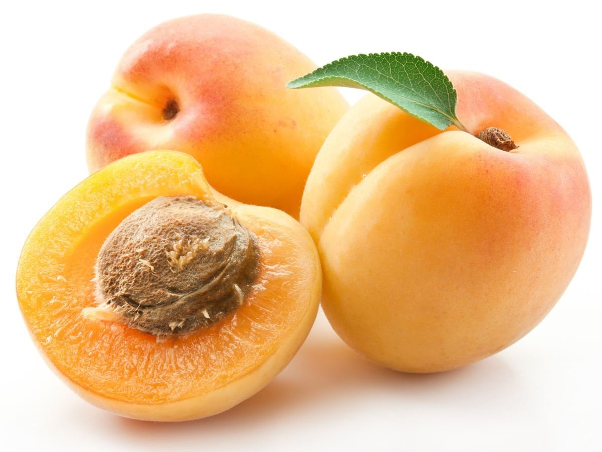 Apricots @ Healthy Food For Pregnancy