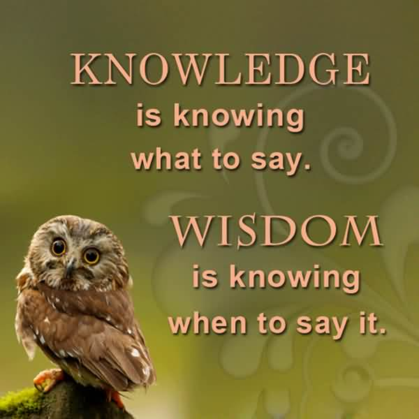 Best Wisdom Quotes About Knowledge