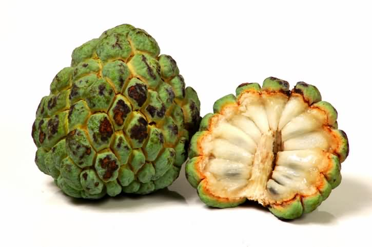 Custard Apple @ Healthy Food For Pregnancy