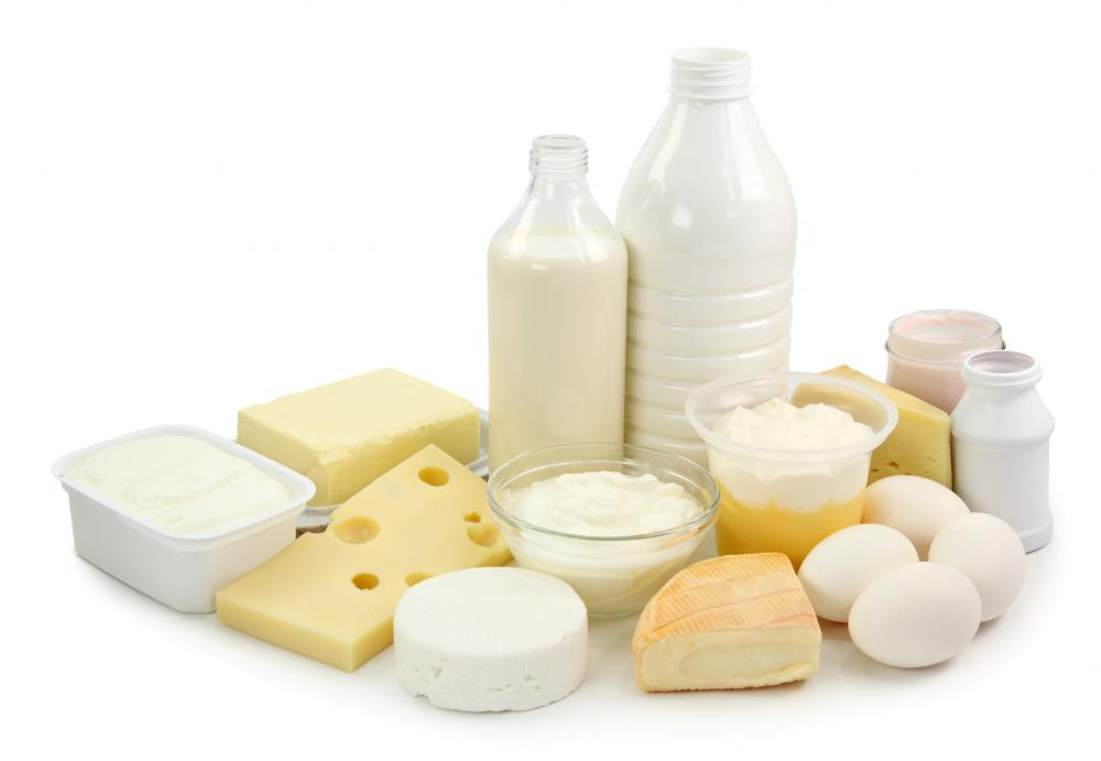 Dairy Products @ Healthy Food For Pregnancy