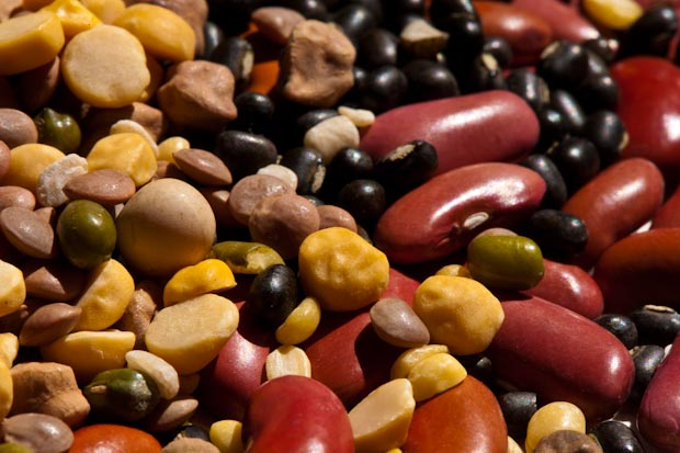 Dried Beans & Lentils @ Healthy Food For Pregnancy