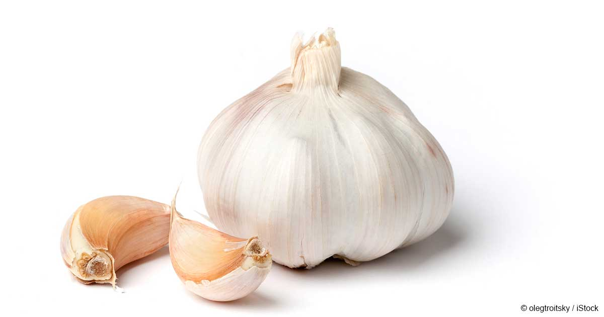 Garlic @ Healthy Food For Kidney