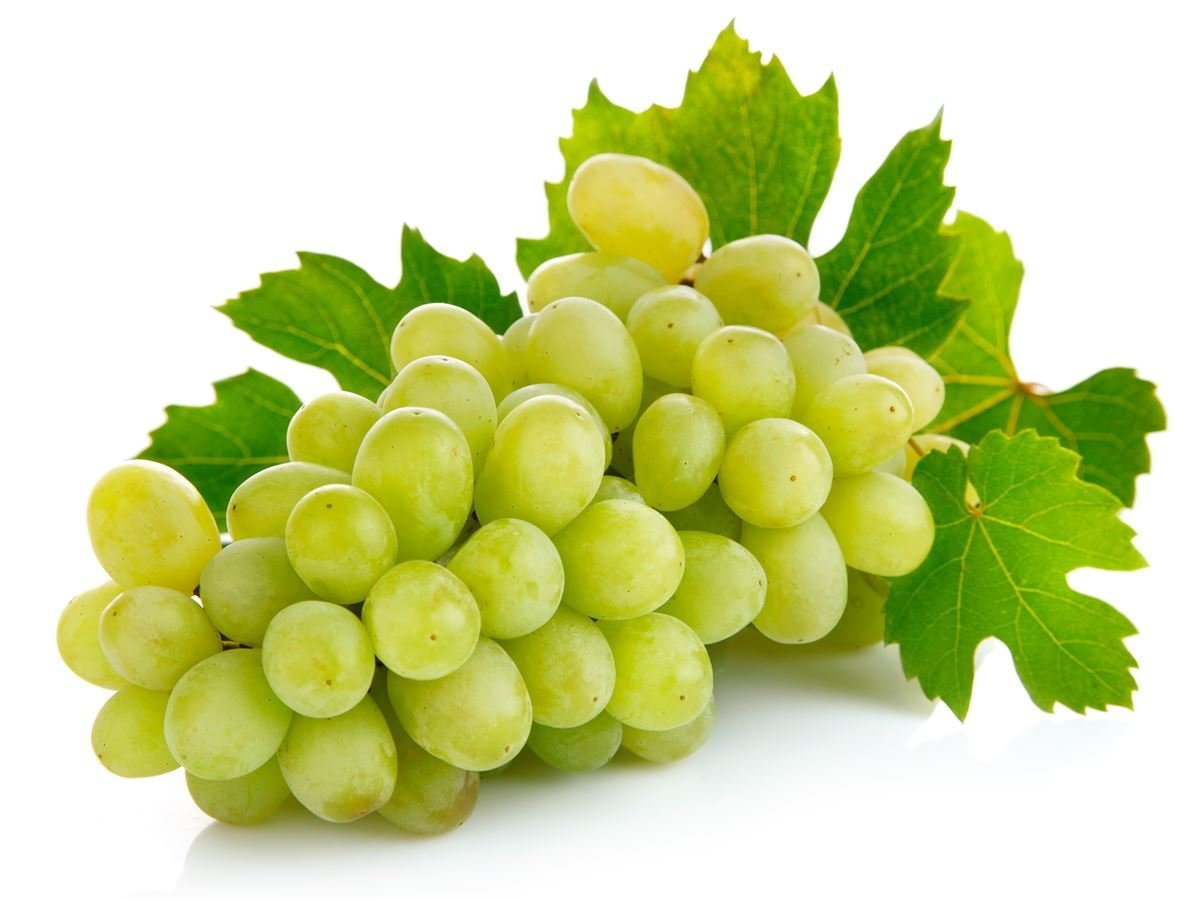 Grapes @ Healthy Food For Pregnancy