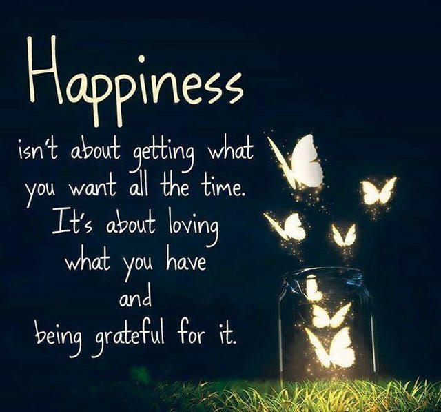 Happiness isn't about getting what you want all the time. It's about loving what you have and being grateful for it