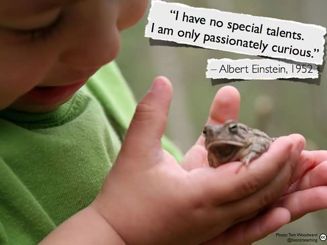 I have no special talents. I am only passionately curious. – Albert Einstein