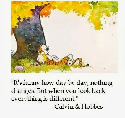 Isn't it funny how day by day nothing changes, but when you look back, everything is different