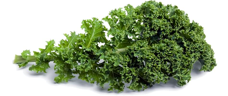 Kale @ Healthy Food For Baby