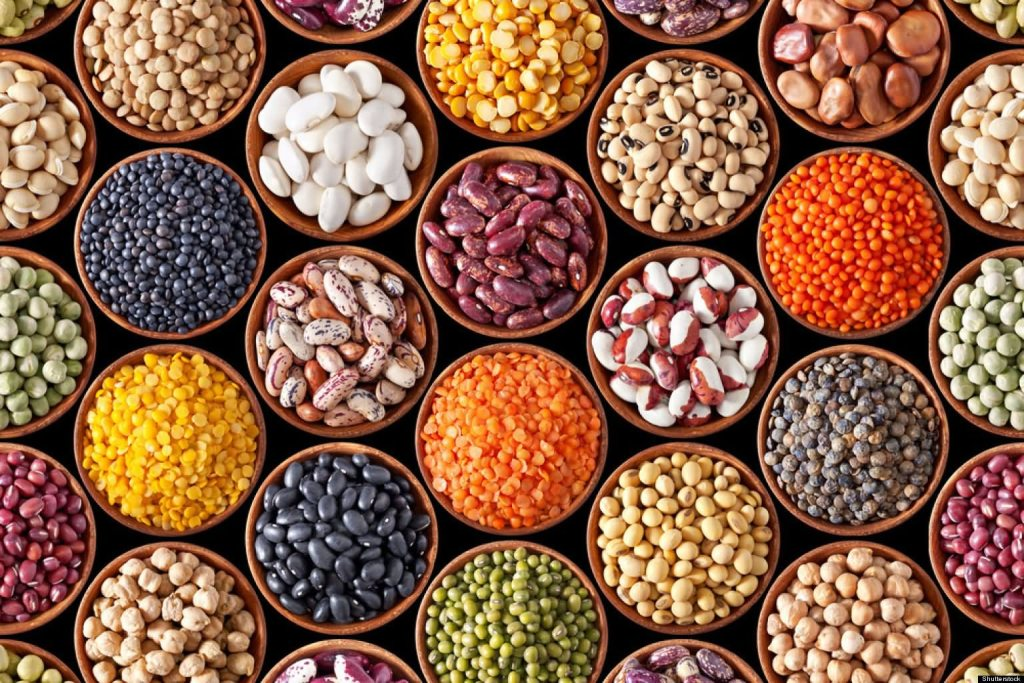 Legumes @ Healthy Food For Pregnancy