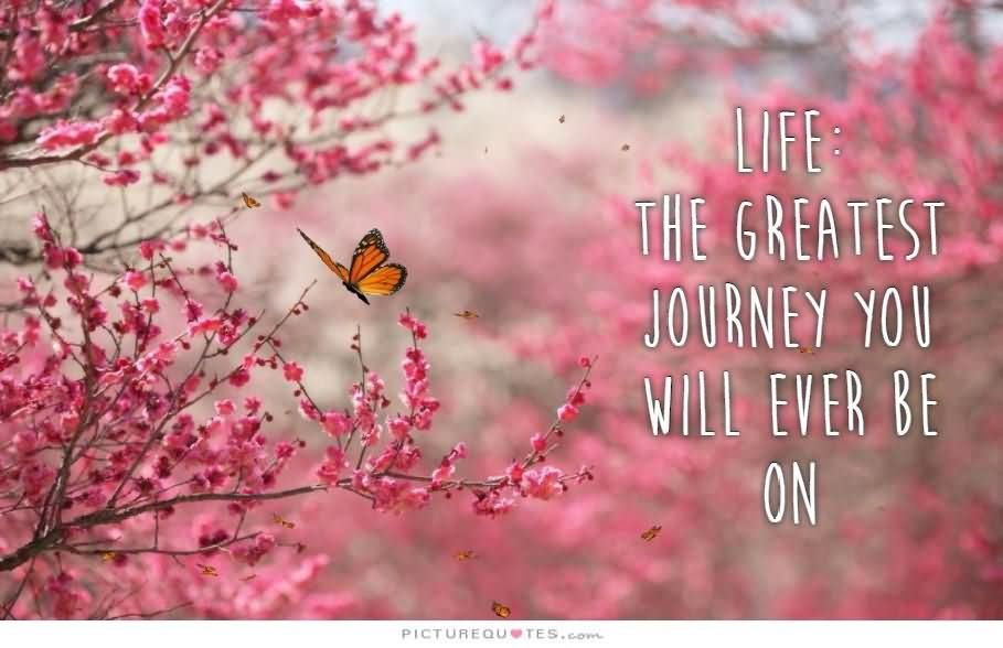 Life The Greatest Journey You Will Ever Be On