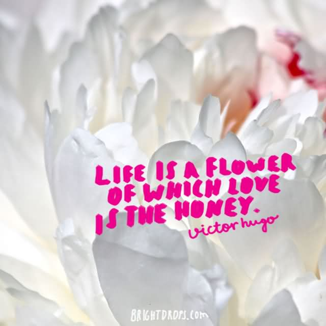"""Life is a flower of which love is the honey."""" ~ Victor Hugo"""