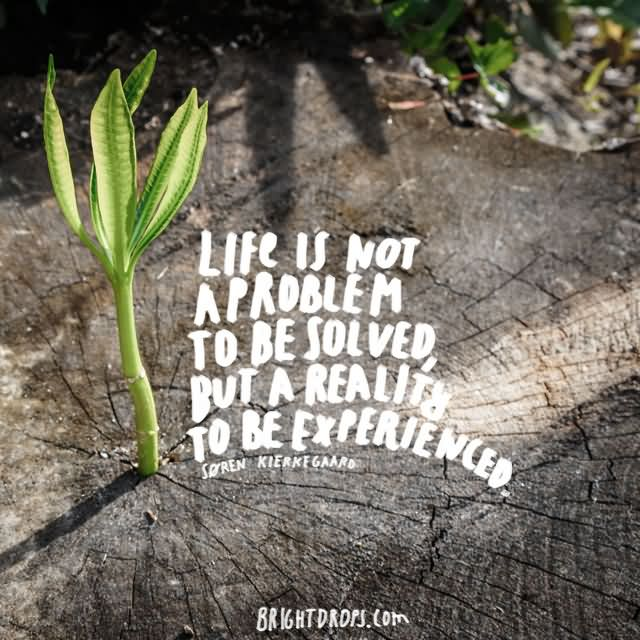 """Life is not a problem to be solved, but a reality to be experienced."""" ~ Søren Kierkegaard"""