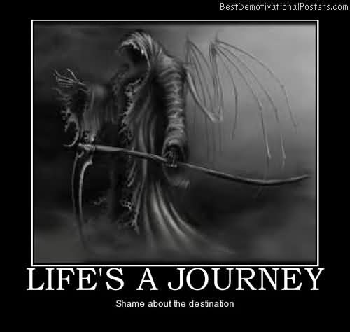 Life's A Journey Shame About The Destination