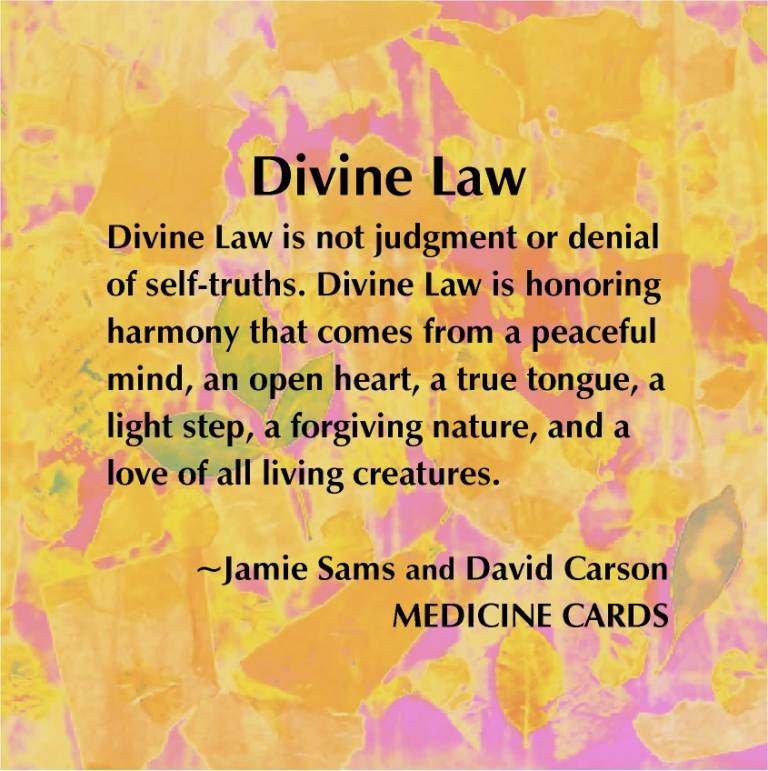 Meaningful Universal Laws Quotation