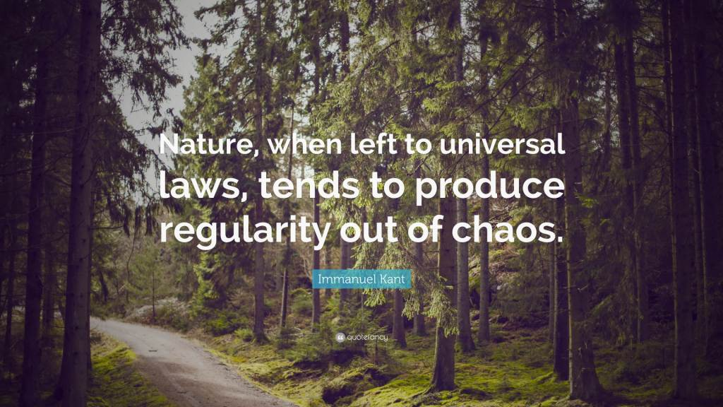 Nice Universal Laws Quotes By Immanuel Kant
