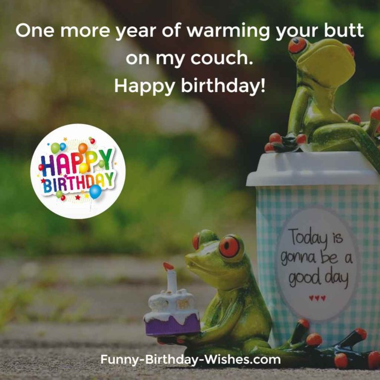 One more year of warming your butt on my couch. Happy birthday