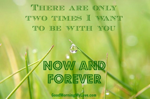 Romantic Love Quotes 17