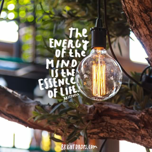 """The energy of the mind is the essence of life."""" ~ Aristotle"""
